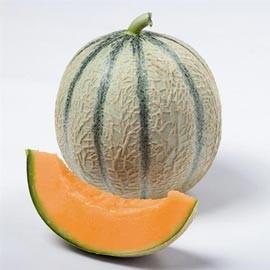 LE CHENE FLEURI Ancenis Maine Et Loire 49 Melon Greffes Silvan