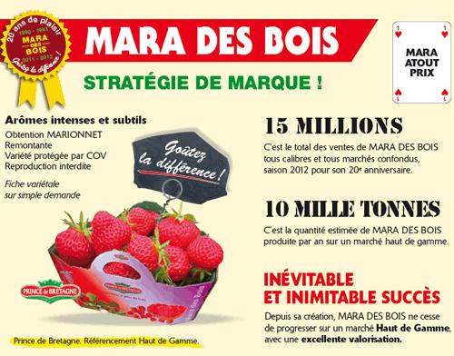 LE CHENE FLEURI Ancenis Maine Et Loire 49 Mara Des Bois